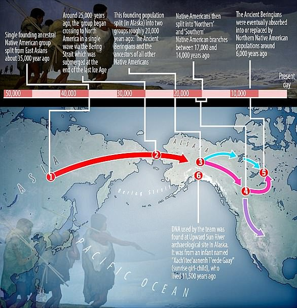 Founding population that crossed into Alaska from Siberia and gave rise to original Native Americans consisted of just 250 people - before spreading across the continents and growing by the MILLIONS., founding population americas, first people in america were only 250, Founding population that crossed into Alaska from Siberia and gave rise to original Native Americans consisted of just 250 people - before spreading across the continents and growing by the MILLIONS.