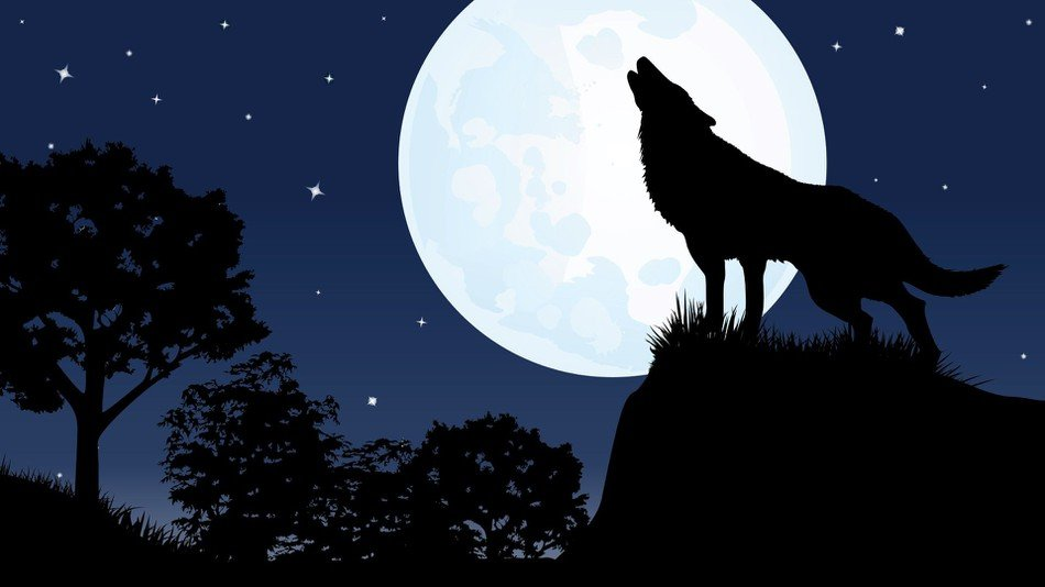 full moon sleep, Can a full Moon really affect your sleep?