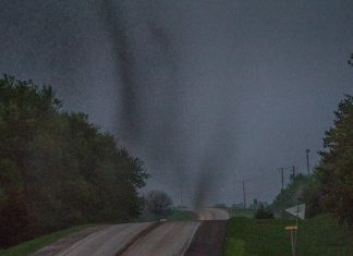 insect swarm forms tornadoes iowa, iowa insect invasion, giant insect swarm looks like tornado iowa