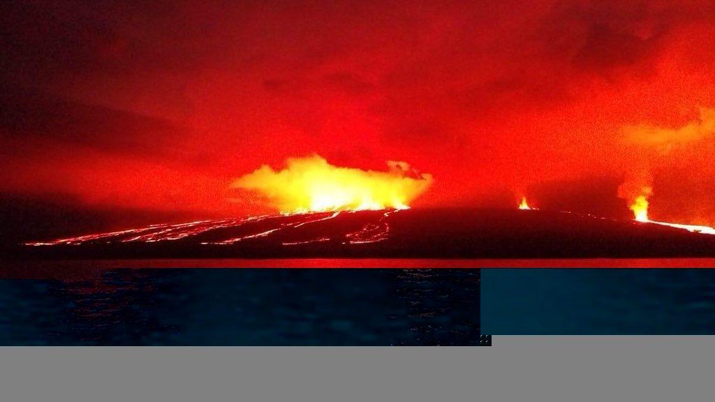 Eruption Sierra Negra volcano Isabela Island Galapagos, new volcano erupts galapagos, galapagos volcanic eruption