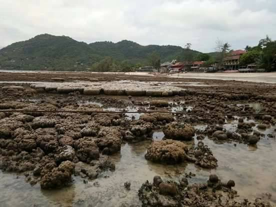 Ocean disappears in Thailand in June 2018, Strong water receding reported in the Gulf of Thailand in June 2018, thailand water disappearance, water disappears in thailand, ocean disappears thailand