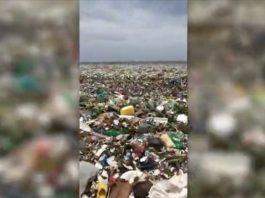 Beach Dominican Republic garbage plastic, Beach Dominican Republic garbage plastic video, Beach Dominican Republic garbage plastic instagram, Beach Dominican Republic garbage plastic video