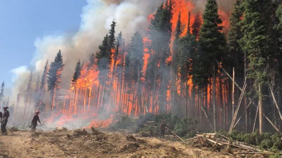 Wildfire season now the worst in history in British Columbia, worst wildfire season bc is 2018