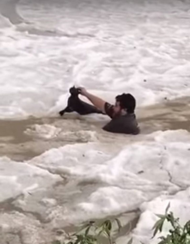 man saves cat from drowning in frozen water saudi arabia, Severe hailstorm in Saudi Arabia, Severe hailstorm in Saudi Arabia video, Severe hailstorm in Saudi Arabia pictures, Severe hailstorm in Saudi Arabia august 2018