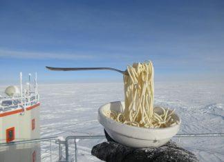 Antarctica frozen spaghettis, antarctica frozen meals