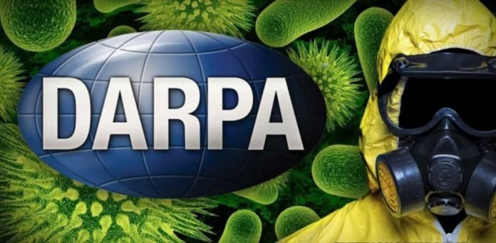 darpa insect allies, Scientists Accuse DARPA of Genetically Modifying Insects for Bioweapon to Spread Agricultural Viruses