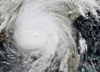 hurricane michael florida