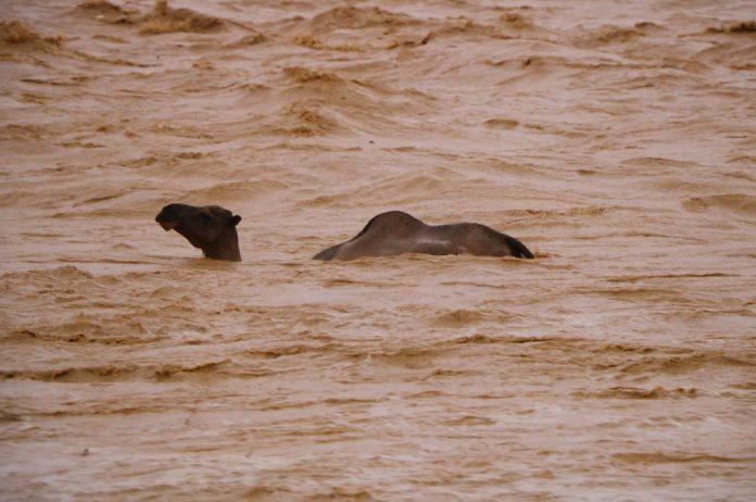 oman and yemen floods tropical cyclone luban, oman floods tropical cyclone luban video, oman floods tropical cyclone luban pictures