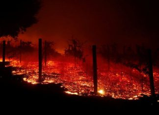 california fire burns nuclear site, california fire burns nuclear site picture, conspiracy theorist, but I'm seriously upset that no one is talking about the fact that the Woolsey Fire was literally started at the Santa Susanna Field Lab - home to Area 4 in California
