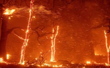 Wildfire death toll rises to 77 in and around Paradise (California), missing count drops to around 1000:, california wildfires