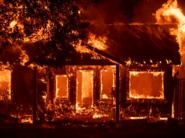 camp fire california, camp fire california videos, camp fire california pictures, camp fire california november 2018