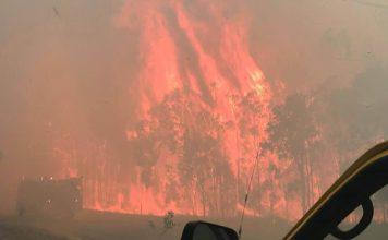 queensland australia fire, wildfire queensland australia fire, queensland australia fire video, queensland australia fire pictures
