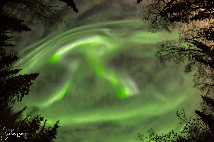 Spotless sun sparks G1-class geomagnetic storm creating vivid auroras around the world Geomagnetic-storm-aurora-3