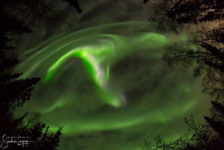 Spotless sun sparks G1-class geomagnetic storm creating vivid auroras around the world Geomagnetic-storm-aurora-6