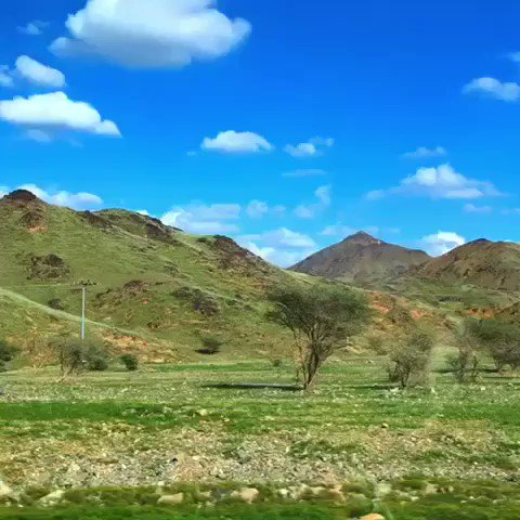 green desert saudi arabia, green desert saudi arabia december 2018, green desert saudi arabia video, green desert saudi arabia pictures