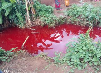 blood red river malawi africa, blood red river malawi africa video, blood red river malawi africa pictures