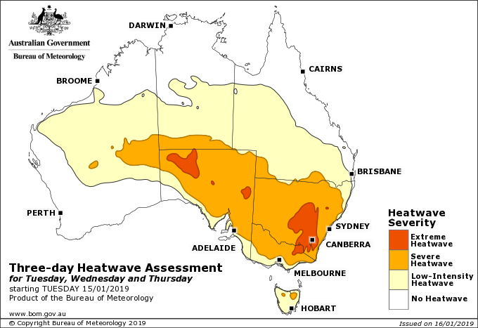 heatwave australia january 2019, heatwave australia january 2019 bats falling from trees, heatwave australia january 2019 video, heatwave australia january 2019 map