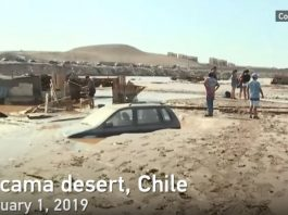 atacama desert floods february 2019, atacama desert floods february 2019 video, atacama desert floods february 2019 pictures