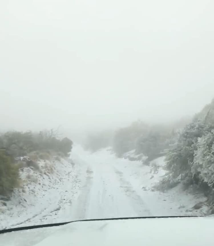 The Hawai'i DLNR Division of State Parks reports that for perhaps the first time ever, snow has fallen in a Hawai'i State Park on Saturday, Feb. 9, 2019.