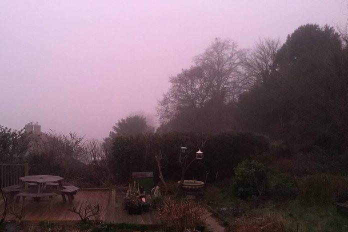 pink fog uk, pink fog uk video, pink fog uk picture, pink fog uk february 2019