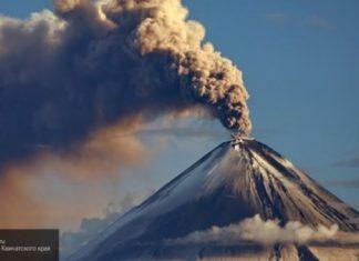 shiveluch volcano eruption feb 2019