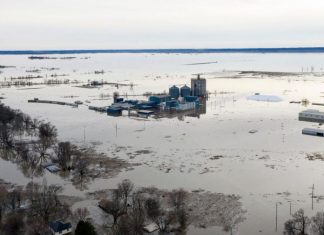 Nebraska historic floods kill millions of livestock