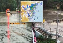 sydney rain flash flooding, sydney rain flash flooding video, sydney rain flash flooding pictures