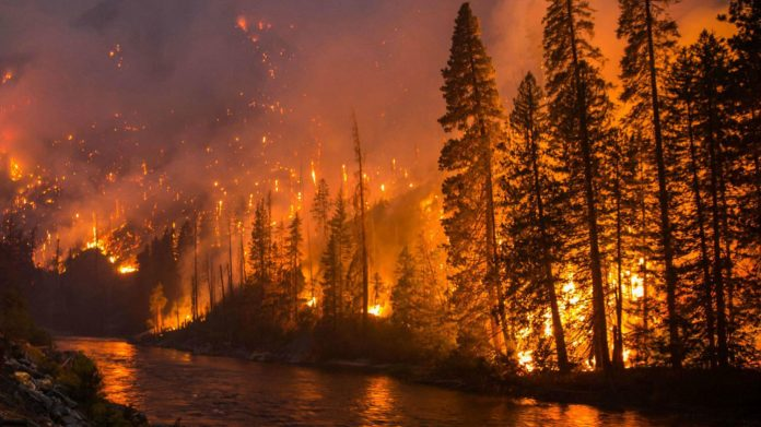 wildfire washington, wildfire washington 2019, bad wildfire washington 2019