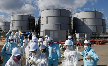 Fukushima: removal of nuclear fuel rods from damaged reactor building begins