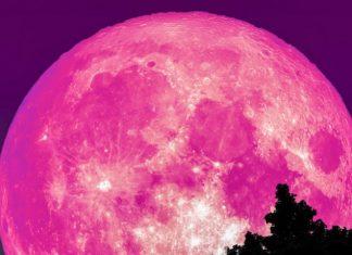 pink full moon april, pink full moon april picture, pink full moon april video, pink full moon april 19 2019