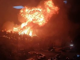south korea fire april 2019, south korea fire april 2019 video, south korea fire april 2019 pictures, Apocalyptic fire in South Korea in April 2019