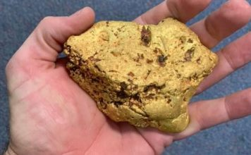 Australian finds a 1.4 kg gold nugget, Australian finds a 1.4 kg gold nugget photo, Australian finds a 1.4 kg gold nugget video, Australian finds a 1.4 kg gold nugget may 2019