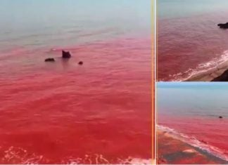 water of the Hormuz strait has turned blood red in Iran, water of the Hormuz strait has turned blood red in Iran video, water of the Hormuz strait has turned blood red in Iran picture, water of the Hormuz strait has turned blood red in Iran may 2019
