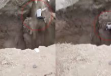 Man luckily survives fall into river after ground collapses under him, Man luckily survives fall into river after ground collapses under him video, Man luckily survives fall into river after ground collapses under him may 2019