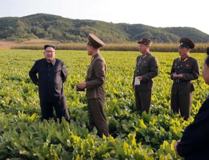 north korea food shortage famine 2019, north korea food shortage famine 2019 video, north korea food shortage famine 2019 picture, north korea food shortage famine 2019 un