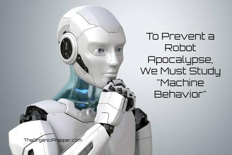"To Prevent A Robot Apocalypse, We Must Study ""Machine Behavior"""