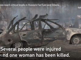 russia fires may 2019, russia fires may 2019 video, russia fires may 2019 pictures