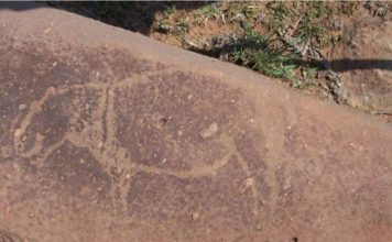ancient rock carving in world largest impact crater south africa, Archeologists have discovered ancient rock carving in the world's largest impact crater in South Africa