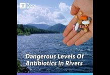 antibiotics pollution rivers