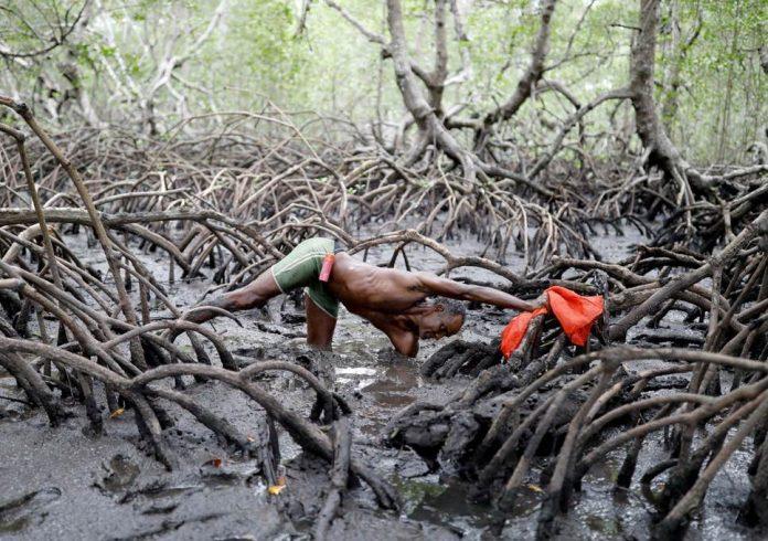 climate apartheid, climate apartheid rich vs poor, climate apartheid has begun