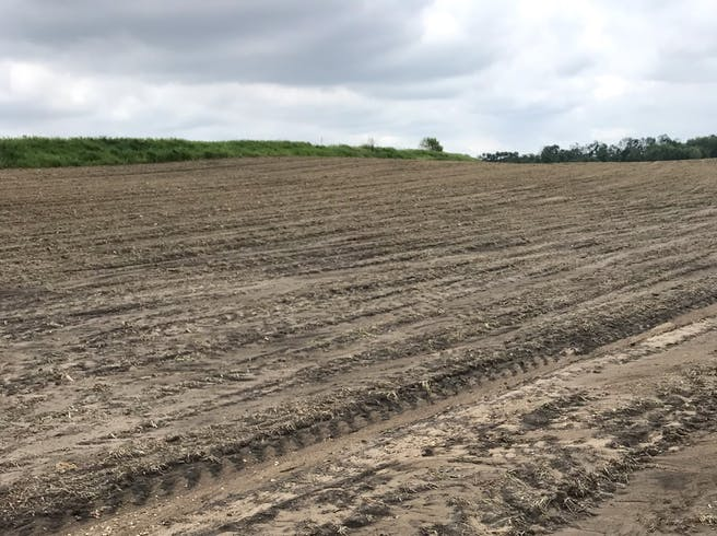 Farming crisis in the USA: Hailstorm damaged thousands of acres of Minnesota crops