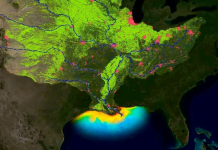 record 'dead zone' predicted in the Gulf of Mexico during summer 2019, record 'dead zone' predicted in the Gulf of Mexico during summer 2019 map, record 'dead zone' predicted in the Gulf of Mexico during summer 2019 video, ecosystem collapse
