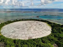 High radiation levels found in giant clams near U.S. nuclear dump in Marshall Islands