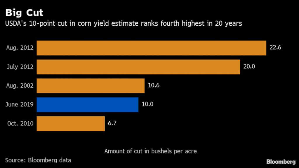 us farming crisis 2019, us farming crisis 2019 corn, us farming crisis 2019 soybeans, us corn and soybeans planting season2019