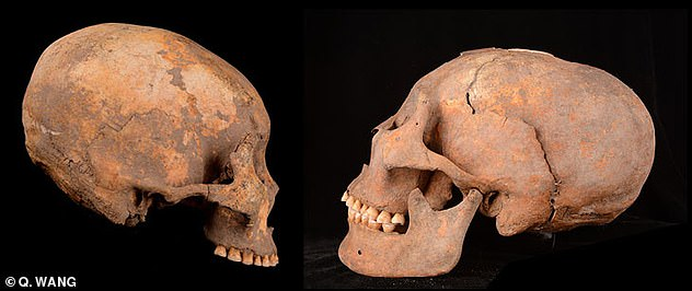 alien-shaped skulls china, alien-shaped skulls china pictures, alien-shaped skulls china video, alien-shaped skulls china july 2019