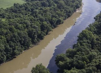 bourbon spill disaster july 2019, bourbon spill disaster july 2019 video, bourbon spill disaster july 2019 picture, bourbon spill disaster july 2019 fish die-off, bourbon spill disaster july 2019 ohio river, bourbon spill disaster july 2019 kentucky river