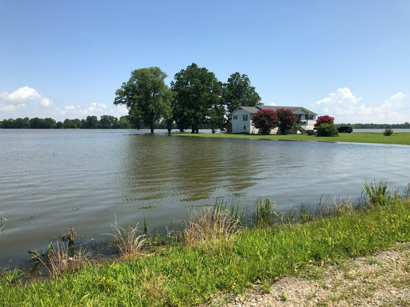tennessee flooding ruins cotton soybean crops, tennessee flooding ruins cotton soybean crops video, tennessee flooding ruins cotton soybean crops pictures, tennessee flooding ruins cotton soybean crops news, tennessee flooding ruins cotton soybean crops update