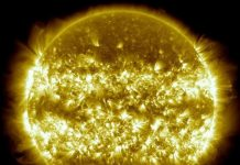 terminator event sun, 'Terminators' on the Sun trigger plasma tsunamis and the start of new solar cycles