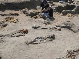 Archaeologists have uncovered the skeletal remains of 227 children seemingly slain and buried hundreds of years ago in a massive ritual sacrifice in Peru, At Least 227 Slaughtered Children Found at World's Largest Child Sacrifice Site in Peru, Archaeologists have uncovered the skeletal remains of 227 children seemingly slain and buried hundreds of years ago in a massive ritual sacrifice in Peru picture, Archaeologists have uncovered the skeletal remains of 227 children seemingly slain and buried hundreds of years ago in a massive ritual sacrifice in Peru video