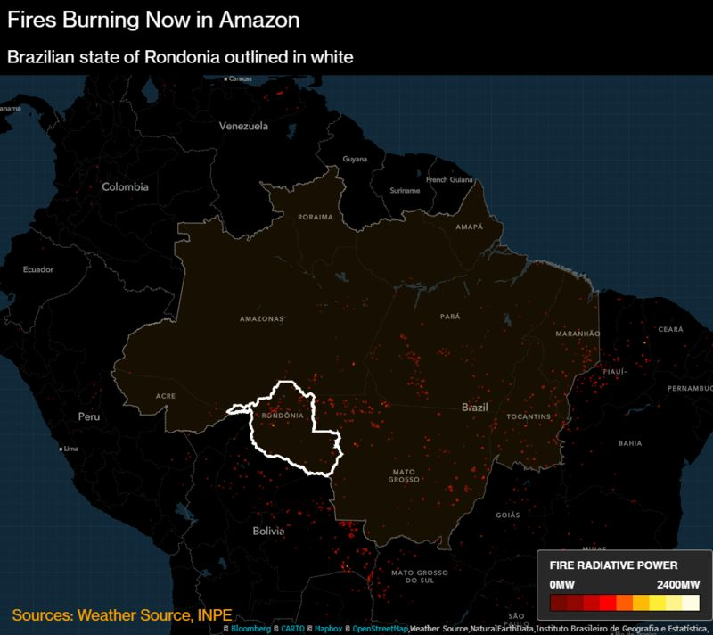 "Forest fires are tearing through the Amazon rainforest, prompting worldwide protests and demands for action to protect the ""lungs of the world."" But, away from the spotlight, the Brazilian fires are dwarfed by blazes in Africa."